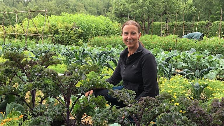 Anna_Lena Sonesson berättar att ¨Selma Lagerlöf åt väldigt mycket grönsaker som hon även odlade i sin trädgård.