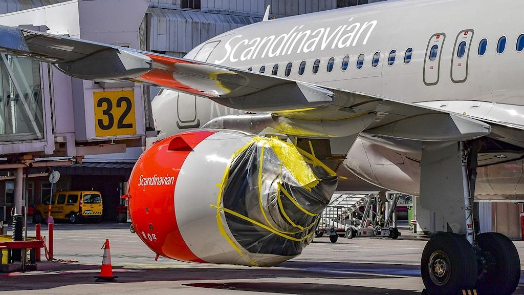 Flygplan. Foto: Jonas Ekströmer/TT