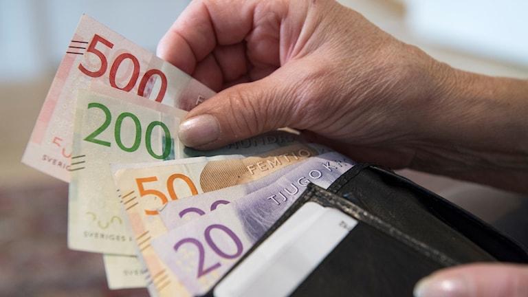 Plånbok med sedlar. Foto: Henrik Montgomery/TT