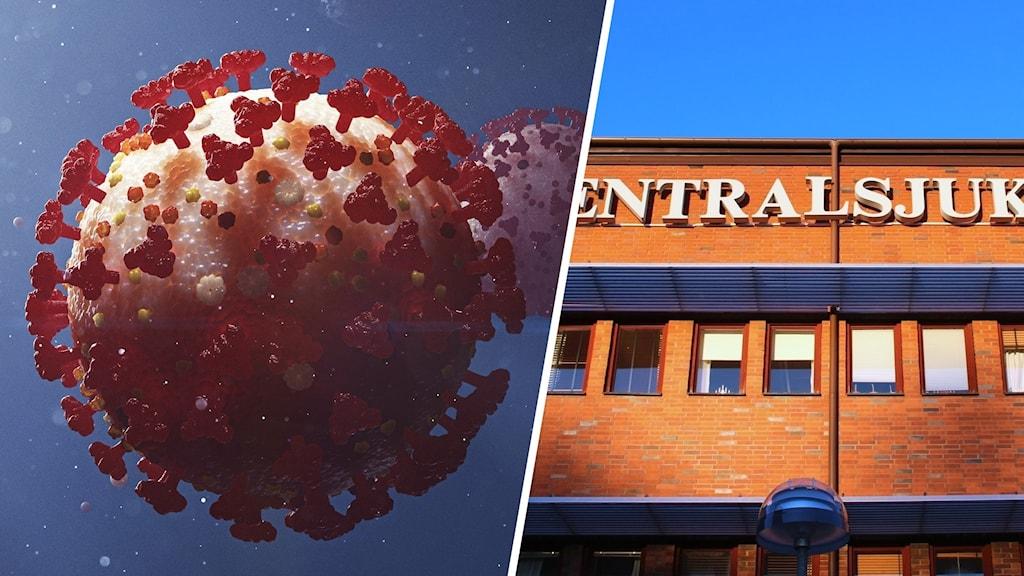 Ett ritat coronavirus och en bild av centralsjukhuset. Foto: Stefan Hörberg/Rithuset och Sveriges Radio.