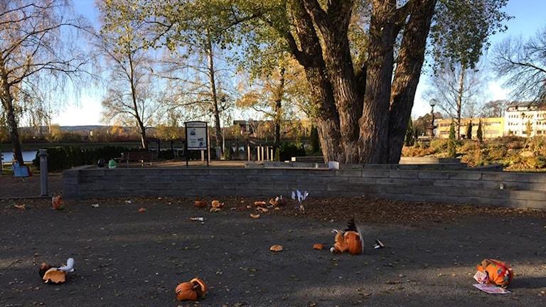 Även förra året vandaliserades pumporna i parken.