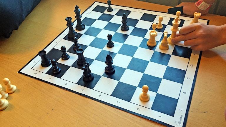 Schackspel under Schackfyran på Vallargärdets skola