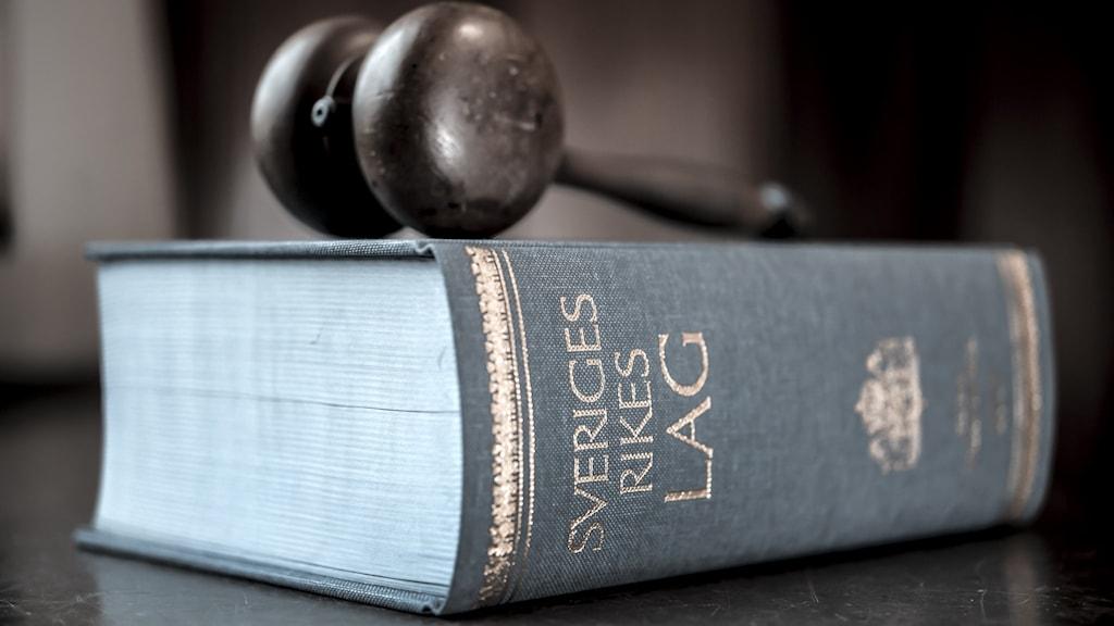 En domarklubba och en lagbok. Foto: Anders Wiklund/TT.
