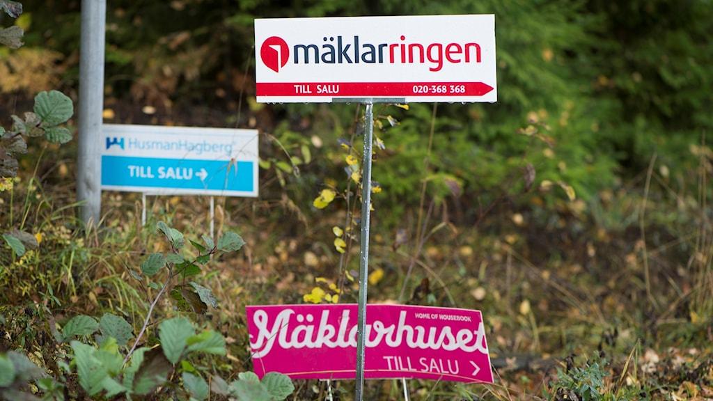 Tre mäklarfirmors till-salu skyltar i en backe Foto: Fredrik Sandberg/TT