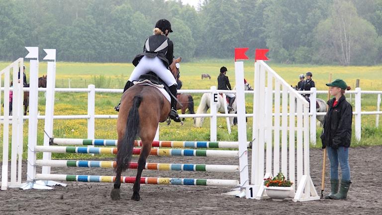 En ryttare och häst vid ett hinder. Foto: Lars-Gunnar Olsson/Sveriges Radio.