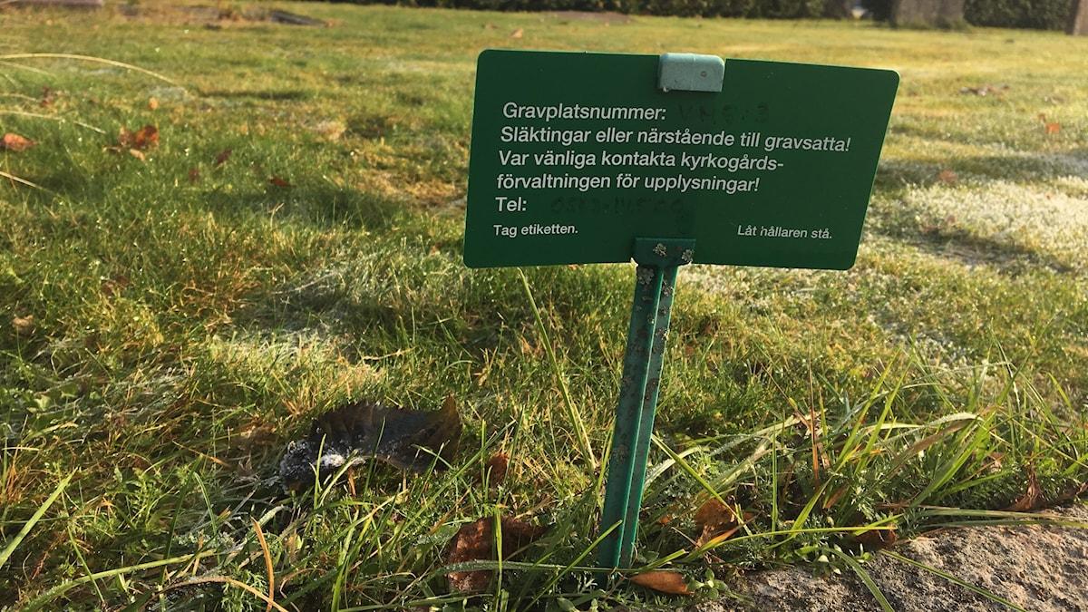 En grön skylt som efterlyser gravrättsinnehavare. Foto: Jonas Berglund/Sveriges Radio.