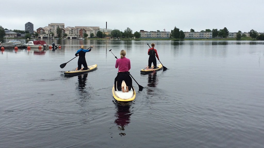 tre kvinnor på¨paddelbrädor på sjö SUP paddle karlstad foto: annika ström