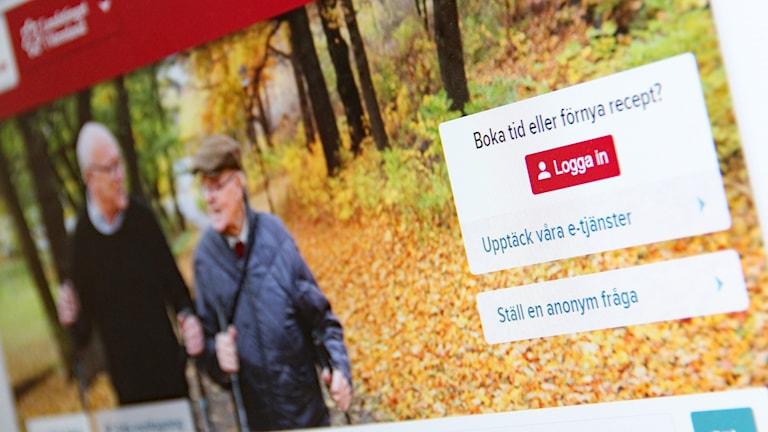 Vårdguidens startsida på nätet. Foto: Skärmdump