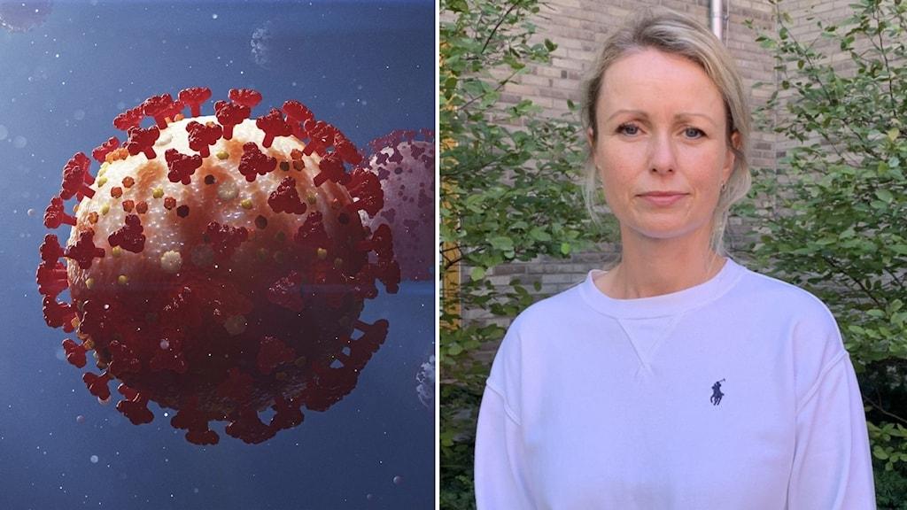 Delad bild: virus, kvinna i lila tröja. Foto: TT/Jonas Berglund/Sveriges Radio