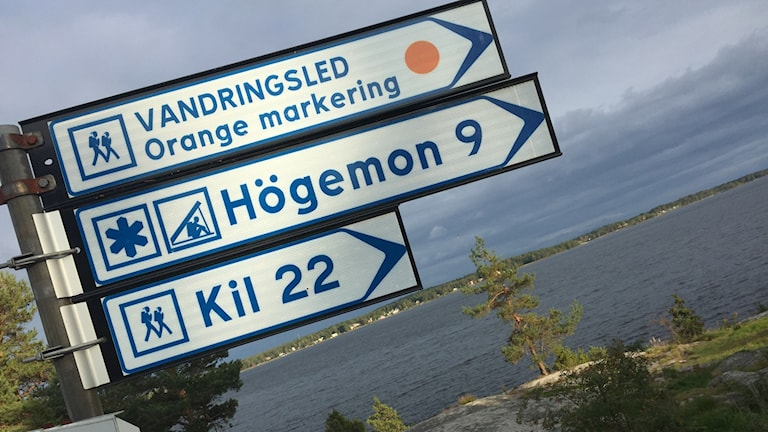 Skyltar som visar vandringsleder på Skutberget. Foto: Lars-Gunnar Olsson/Sveriges Radio.
