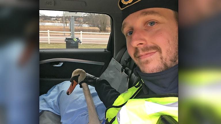 Svan i polisbil intill Mats Engström. Foto: Staffan Sundgren.