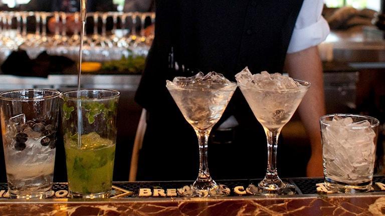 En bartender i arbete. Foto: Eric Risberg/TT