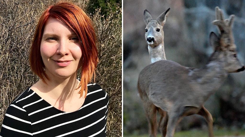 Till vänster: En kvinna med rött hår och randig tröja står utomhus. Till höger: Två rådjur.
