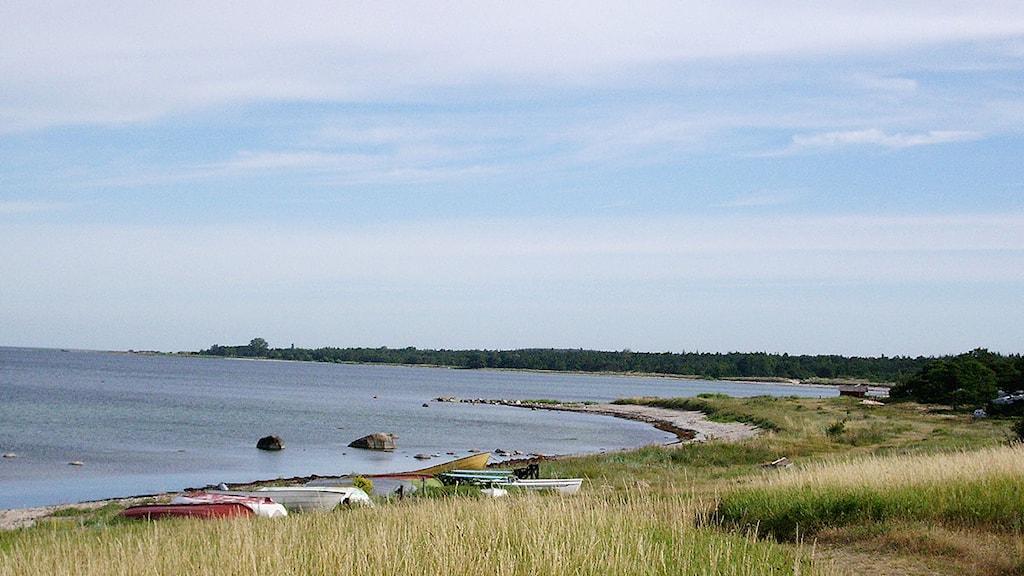 Tofta strand. Foto: Henrik Wallenius/SR Gotland