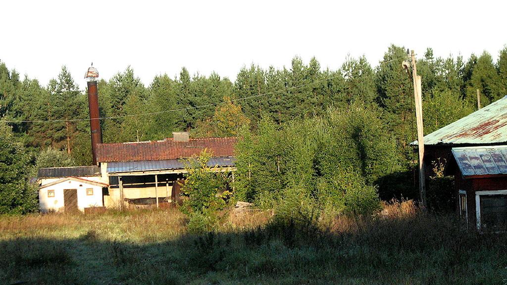 Södervägs brädgård i Vall. Foto: Ulrika Uusitalo-Fernholm/SR Gotland