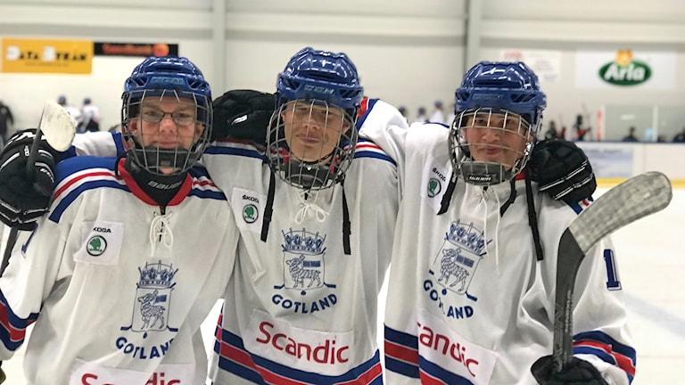 Gotlands målskyttar i kval-match till tv-pucken mot Bohuslän.