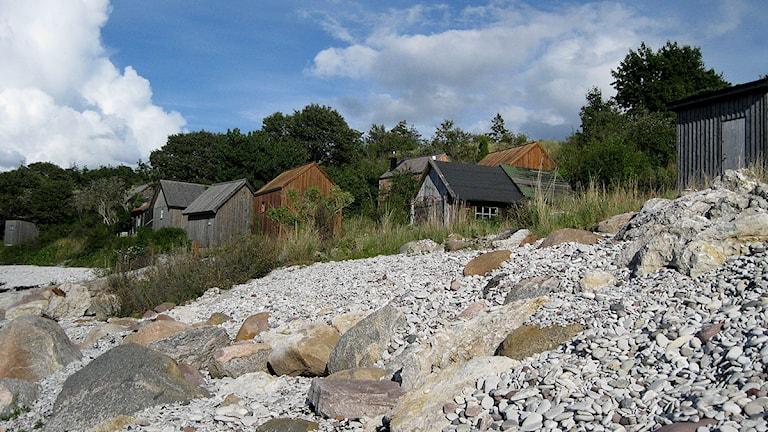 Ygne fiskeläge. Foto: Jonas Neuman/SR Gotland