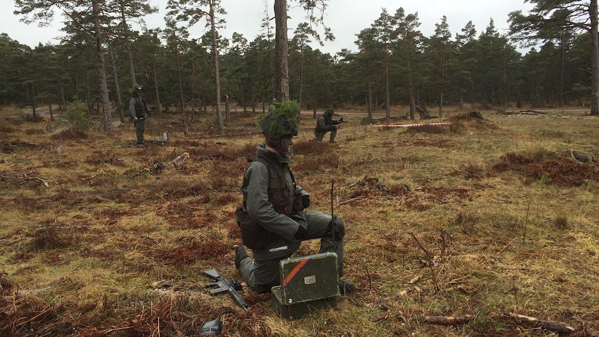 Övning på Tofta skjutfält. Foto: Daniel Värjö/Sveriges Radio