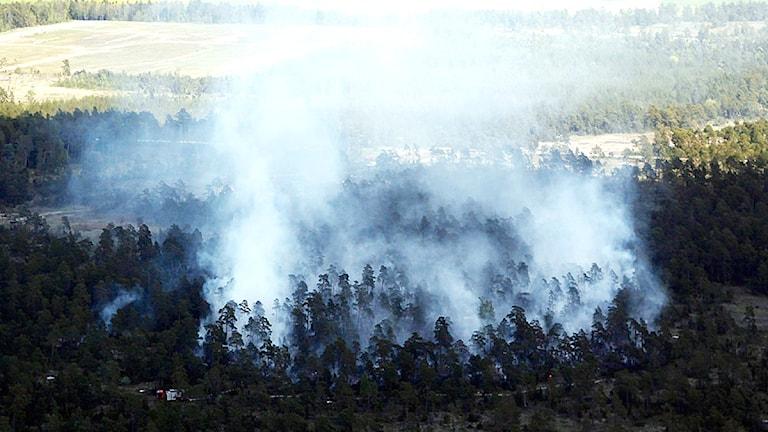 Skogsbrand i Alskog 2009. Flygfoto: Gunnar Britse