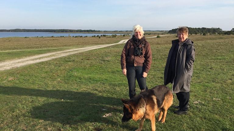 Karin Åström, Agneta Hörnsten och hunden Sicky på Närsholmen.