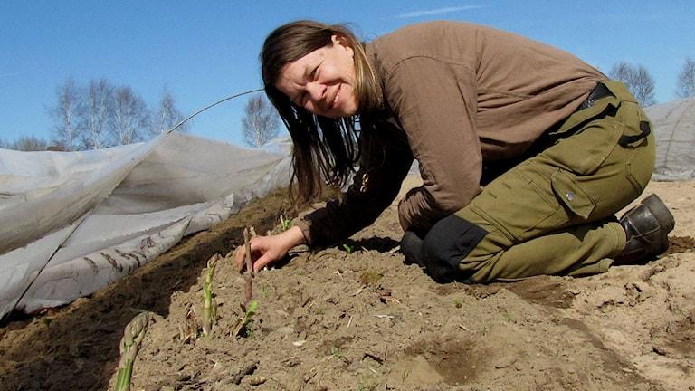Margareta Hoas i sparrislandet vid Lilla Bjers. Foto: Moa Skimutis/SR Gotland