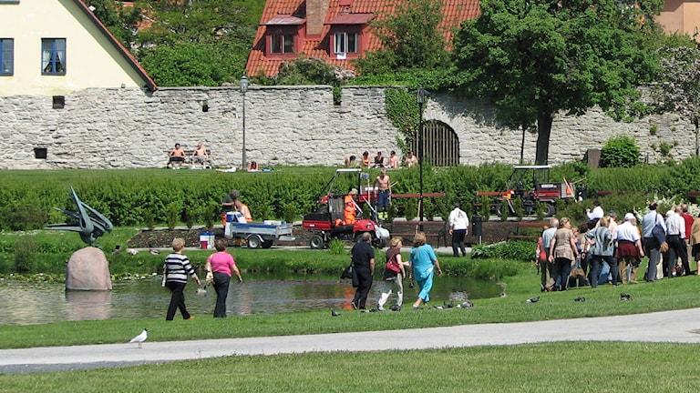 Parkarbete i Almedalen. Arkivfoto: SR Gotland