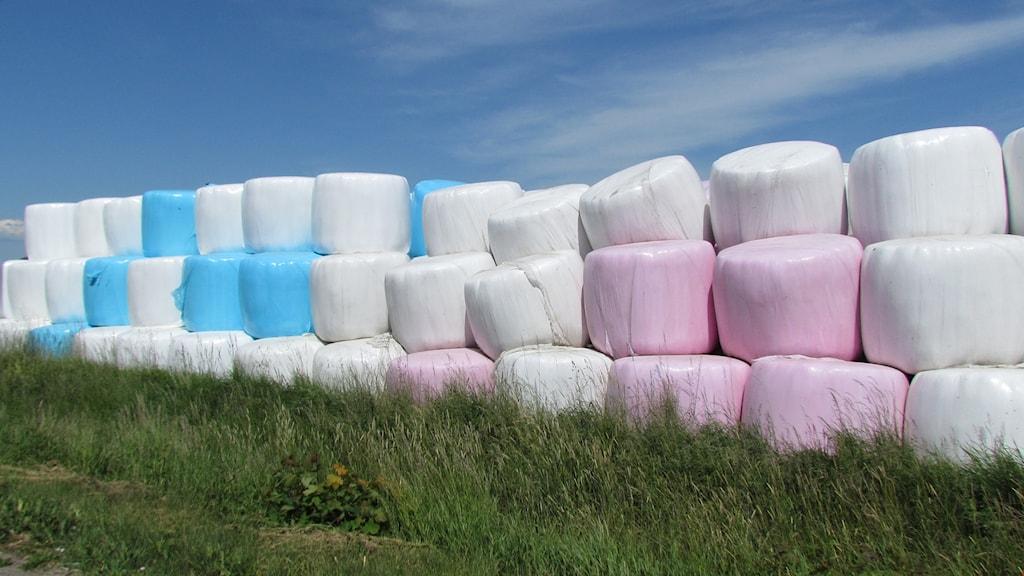 Rosa vita och blå ensilagebalar