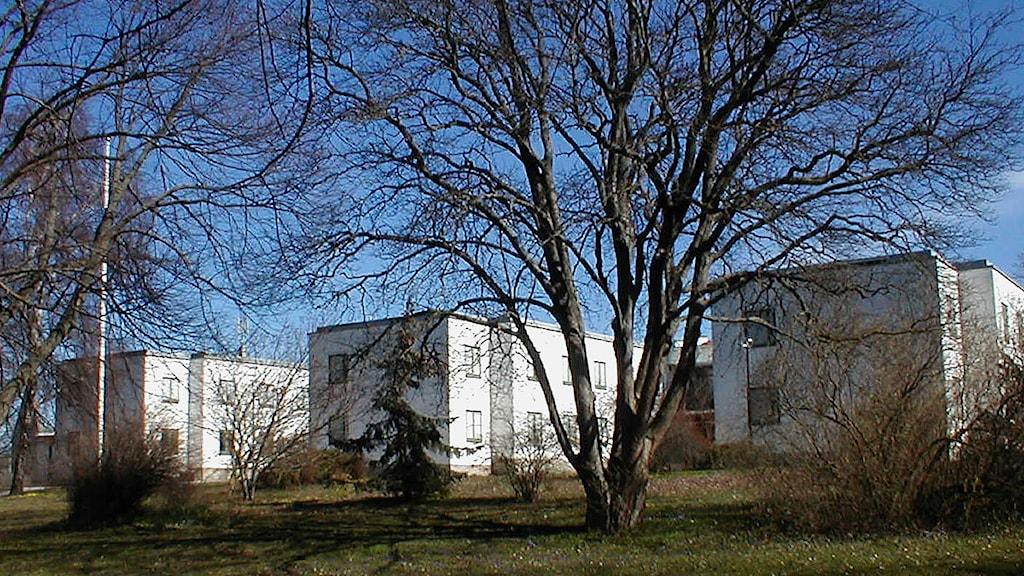 Göransgården i Visby. Foto: Henrik Wallenius/SR Gotland