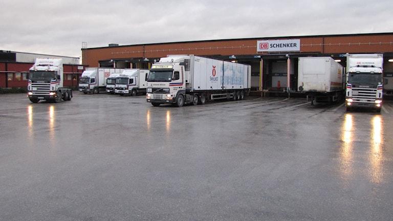Lastbilar vid färjeterminalen i Visby. Foto: Lasse Ahnell/SR Gotland.