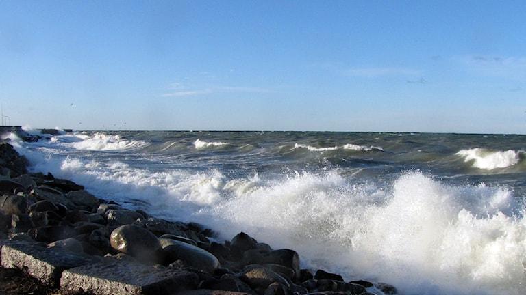 Östersjövågor slår mot vågbrytaren i Visby. Foto: Jonas Neuman/SR Gotland