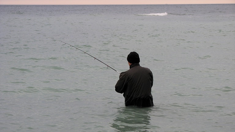 Sportfiskare på Gotland.