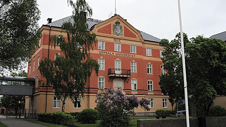 Uppsala universitet. Foto: Katarina Hedström/SR Gotland