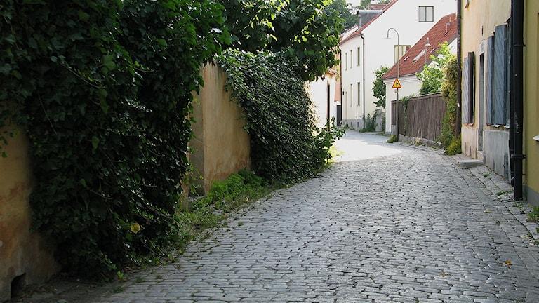 Gata i Visby innerstad. Foto:Henrik Wallenius/SR Gotland