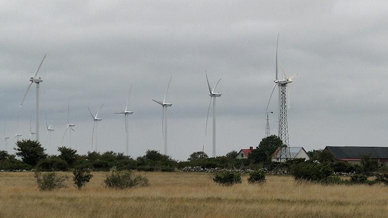 Gammalt och nyare vindkraftverk på Näsudden. Foto: Henrik Wallenius/SR Gotland