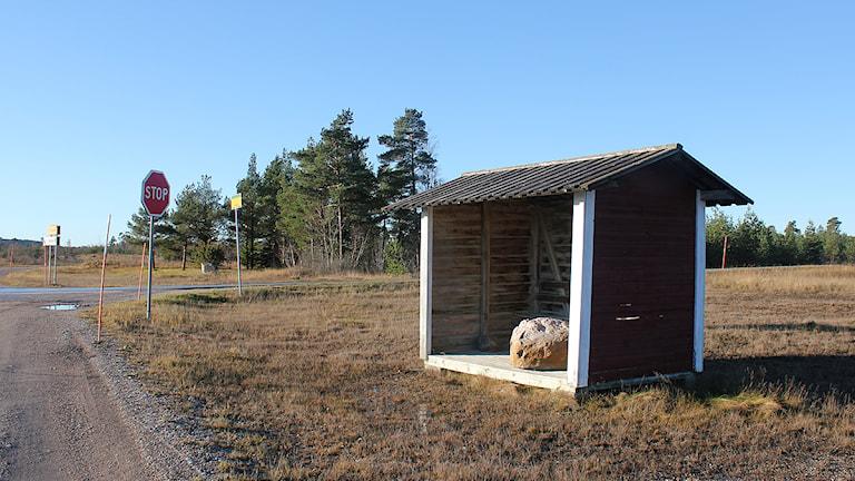 Busskur på den gotländska landsbygden. Foto: Mika Koskelainen/SR Gotland