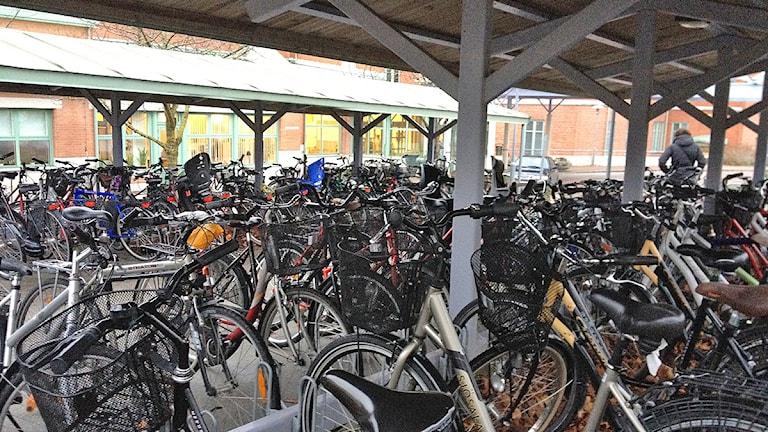 Cykelställ. Foto: Mika Koskelainen/SR Gotland