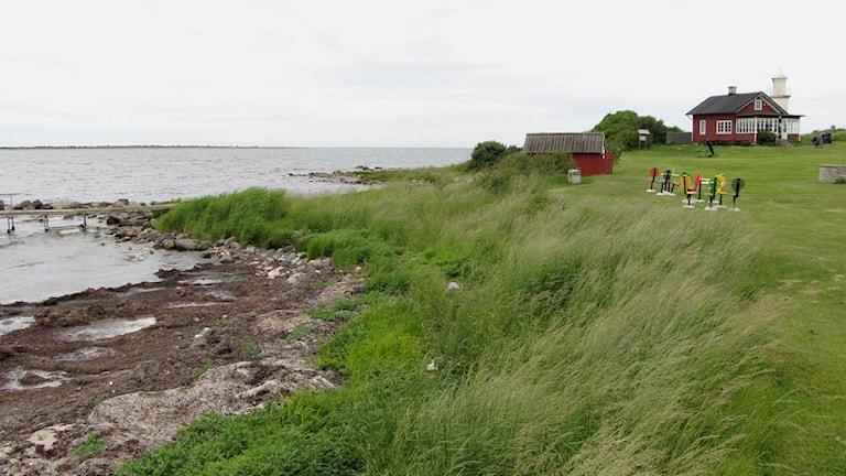 Kronholmens golfbana med klubbhus och fyr. Foto: Lasse Ahnell/P4 Gotland