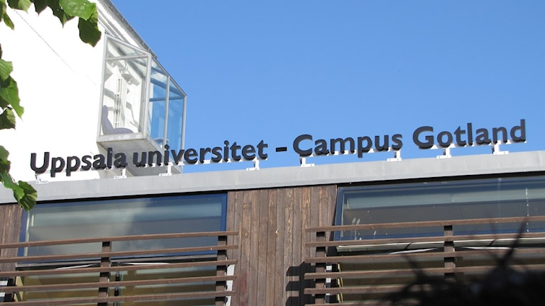 Uppsala universitet - Campus Gotland. Foto: Cristina Jardim Ribeiro / SR Gotland