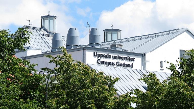 Uppsala universitet Campus Gotland. Foto: Mika Koskelainen/SR Gotland