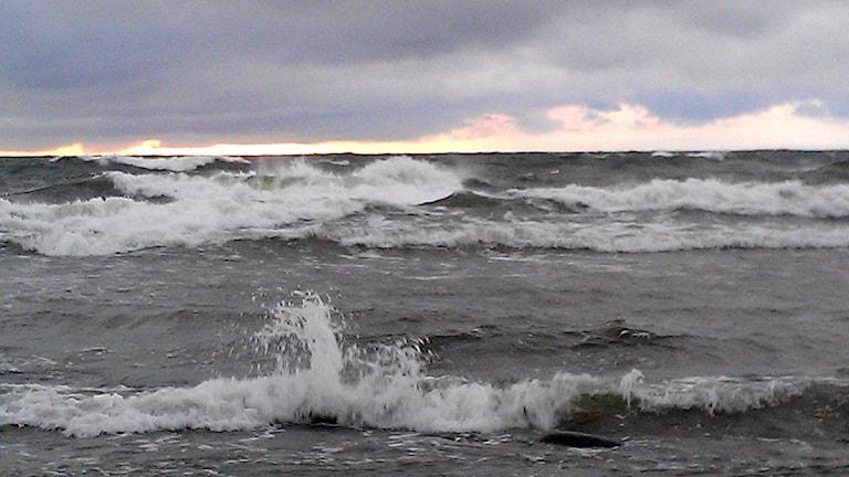 Upprört hav utanför Gotland. Foto: Henrik Wallenius/P4 Gotland