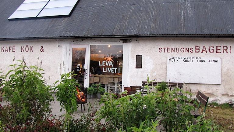 Leva Kungslador. Foto: P4 Gotland Sveriges Radio