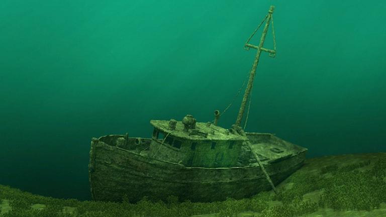 Skeppsvrak i Östersjön från filmen Under Ytan. Foto: Sjöfartsverket