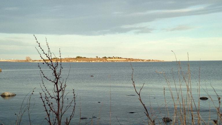 Enholmen sedd från väster. Foto: Katarina Hedström, SR Gotland