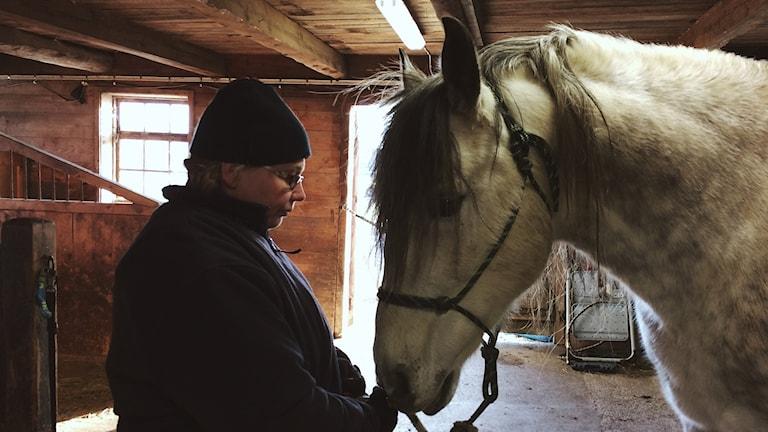 Annika Dahlströms häst Selecto var besviken över att reporterns mikrofon inte var en morot.