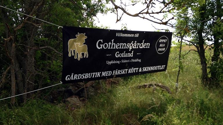 Gothemsgården. Foto: Mika Koskelainen/Sveriges Radio