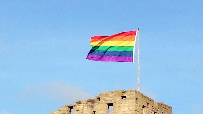 Prideflagga. Foto: Jonas Neuman/Sveriges Radio