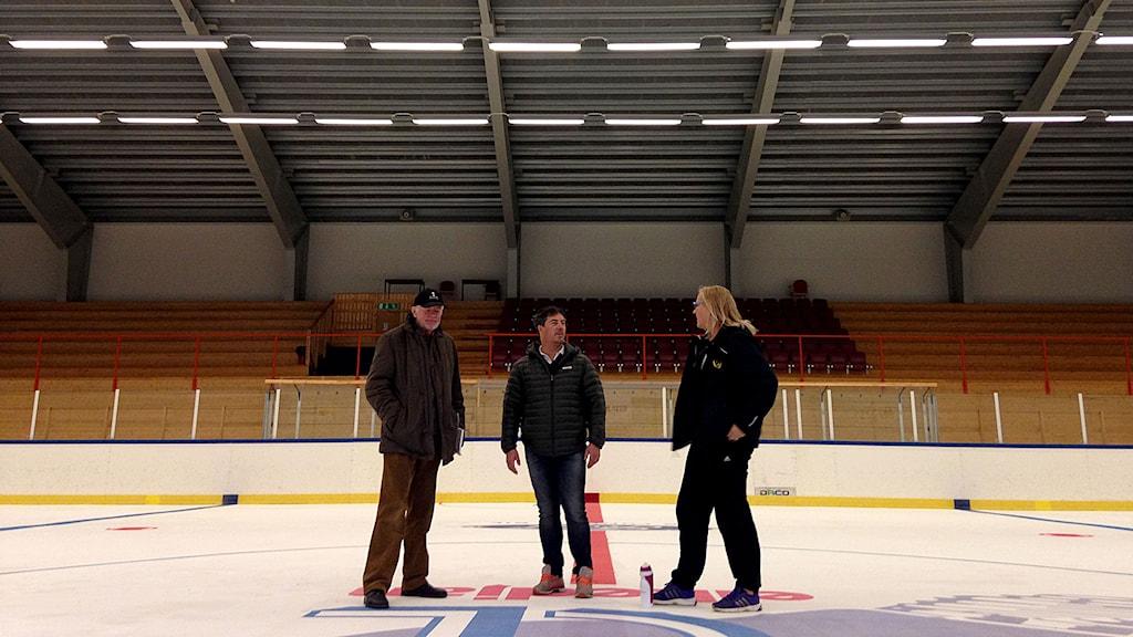 Jan-Erik Pott, Fredrik Malmqvist och Annki Hultman