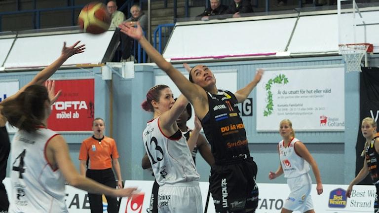 Visby Ladies hemma mot Norrköping Dolphins i damligan i basket.