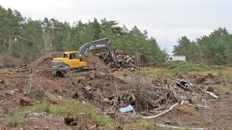 I november 2014 upptäcktes en nedgrävd biltipp i Tingstäde. Men det finns fler dolda deponier på ön. Foto: Patrik Annerud/Sveriges Radio