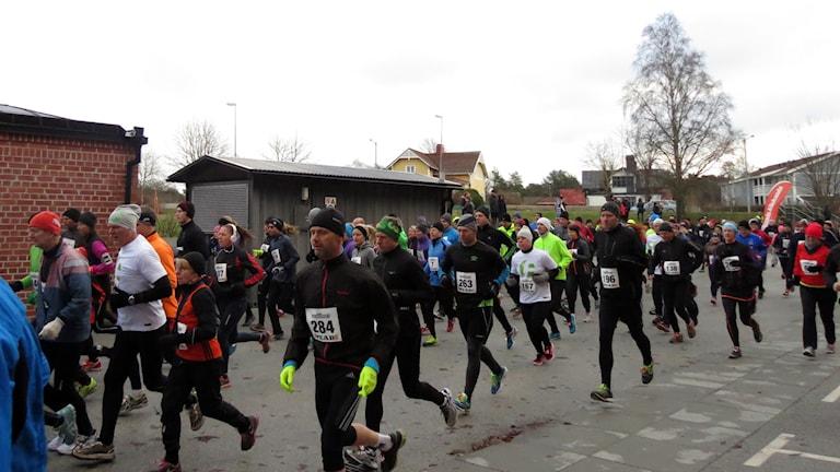 Lucialoppet. Foto: Eva Didriksson/Sveriges Radio